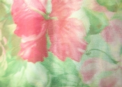 green-pink-hawaiian